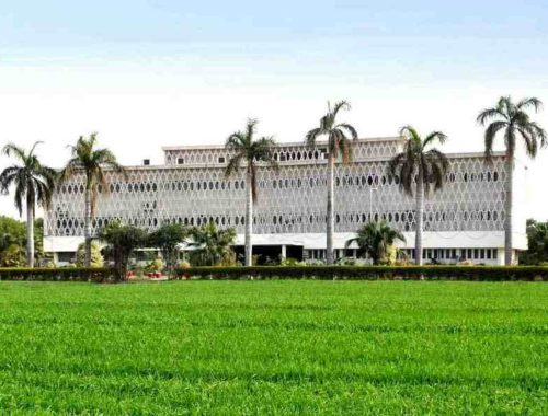 Ayub Research Library