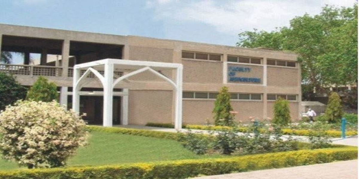 Insect Museum Agriculture University Faisalabad