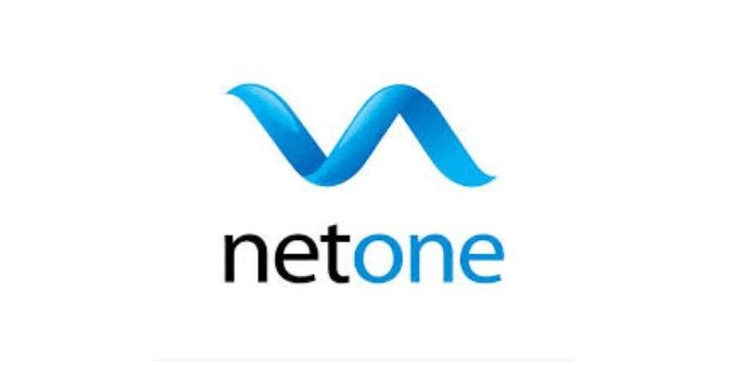 Net One - Software House In Faisalabad